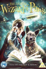 Oswald – magiczny pies