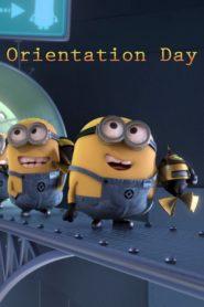 Minionki: Orientation Day