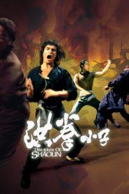 Spadkobiercy Shaolin