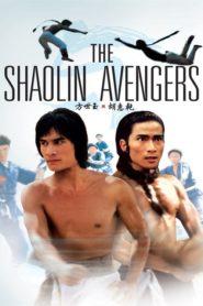Zemsta Shaolin
