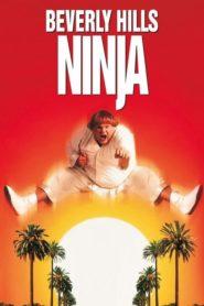Wielki Biały Ninja