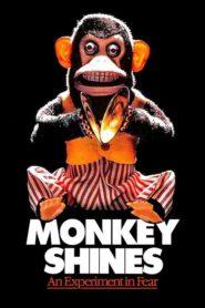 Małpia intryga