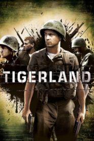 Kraina Tygrysów