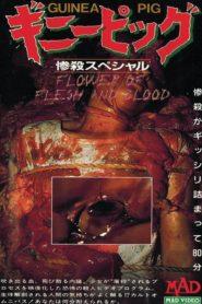 Królik doświadczalny 2: Kwiat ciała i krwi