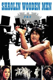 Zemsta Tygrysa z Shaolin