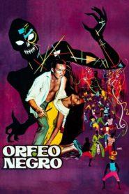 Czarny Orfeusz