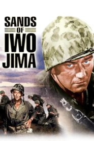 Piaski Iwo Jimy