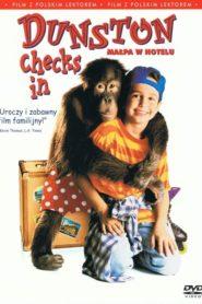 Małpa w hotelu