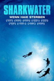 Sharkwater