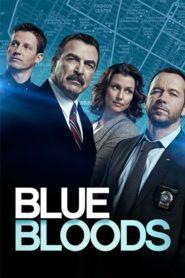 Zaprzysiężeni – Blue Bloods