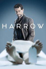 Patolog – Harrow