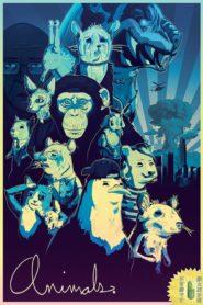 Zwierzęta – Animals.