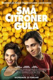 Żółte cytrynki