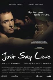 Just Say Love