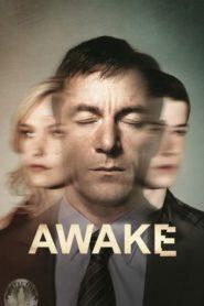 Przebudzenie – Awake