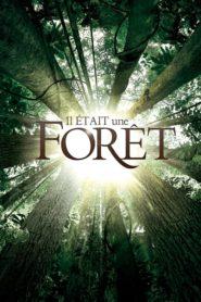 Był sobie las