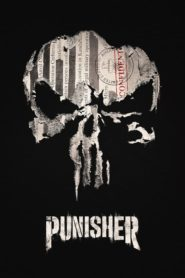 Marvel: Punisher