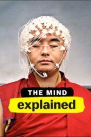 Wyjaśniamy tajemnice umysłu