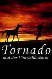 Tornado i zaklinacz koni
