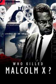 Kto zabił Malcolma X?