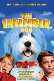 Abner, niewidzialny pies