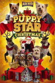 Puppy Star: Boże Narodzenie