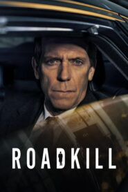 Na poboczu – Roadkill