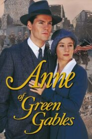 Ania z Zielonego Wzgórza: Kontynuacja opowieści