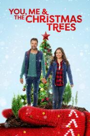 You, Me and the Christmas Trees