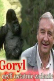 Goryl, czyli ostatnie zadanie…