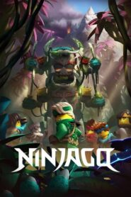 Ninjago: The Unknown Island