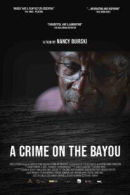 A Crime on the Bayou